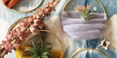 Air Plant Home Workshop