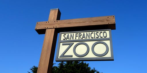 SF Zoo Day Trip