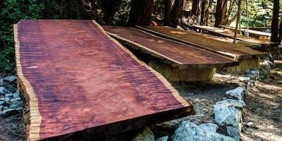 Big Sur Redwood Auction: Last chance.