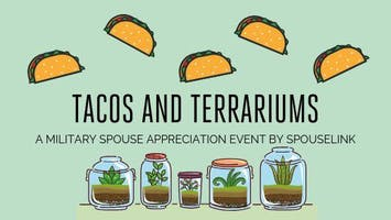 Tacos and Terrariums