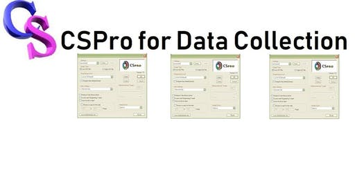 Enhanced Data Collection and Processing using CSPro