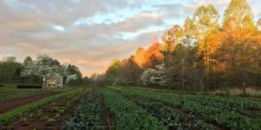 Mindful Living Luncheon at Fry Farm with Set The Table With Love