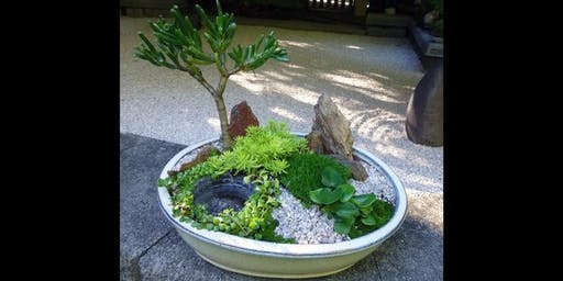 Miniature Japanese garden workshop