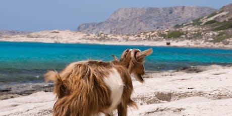 Crete Greek Island Group Travel Tour  - Taste of Crete  tickets