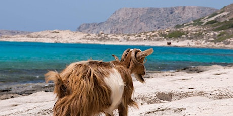 Crete Greek Island Group Travel Tour  - Taste of Crete  tickets