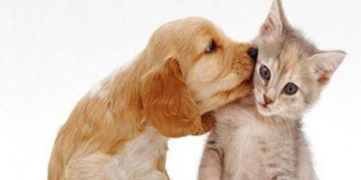 An Evening to Meet our Pets and Adoption applications Accepted! -  Adoption Event #2  -