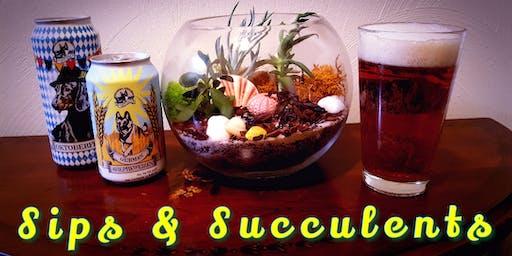 Sips & Succulents     (DIY Terrarium)