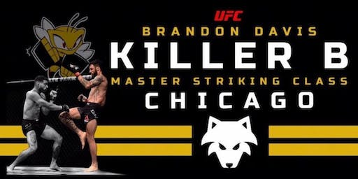 UFC Brandon Davis Master Striking Class