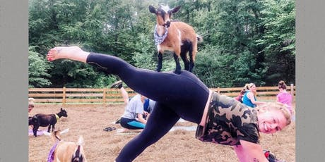 Goat Yoga Bham-Yoga at our family farm with a herd of adorable baby goats! tickets