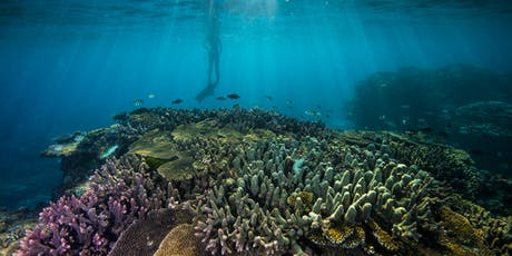 Great Barrier Reef Foundation Projects Information Night: Mackay tickets