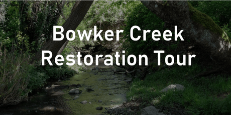 Bowker Creek Restoration Tour tickets