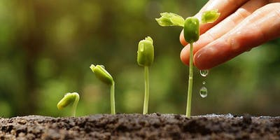 Planting the Seeds of Good Health - Women\