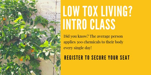 Seaford Low Tox Living Intro Class