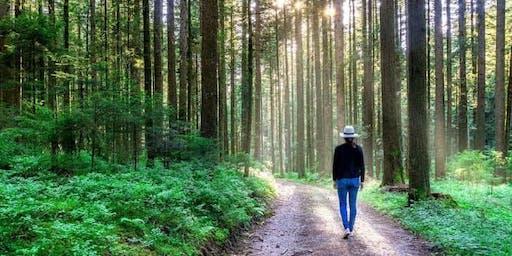 Walk of Happiness