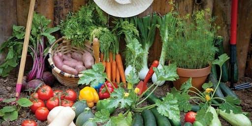 Brentford Together - Food Growing