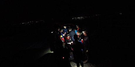 Panopticon Nightrunner: Colourfields (12km) tickets