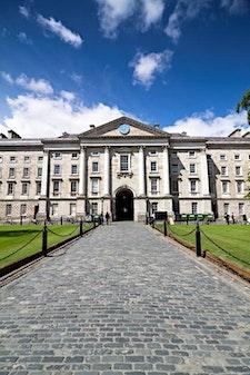 School of Nursing & Midwifery, Trinity College Dublin logo