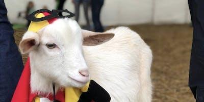 Goat Yoga Nashville- Sensational September