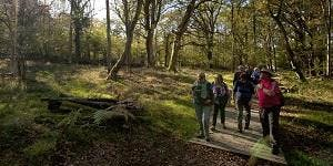 New Forest Walking Festival 2019: Exploring Breamore...
