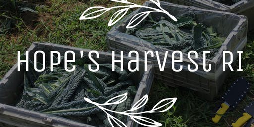 Kale Gleaning Trip with Hope's Harvest - Saturday, 8/17/19