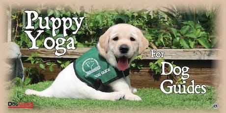 Doggie Dare Puppy Yoga Event tickets