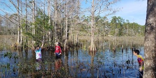 Adventure Awaits - Growing Up Wild-Life in the Wetlands