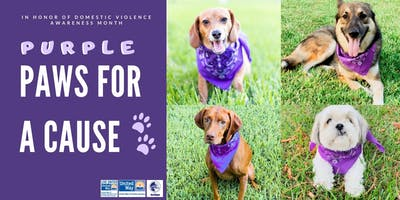 Purple Paws for a Cause Festival, Awareness Walk, and Dog Adoption
