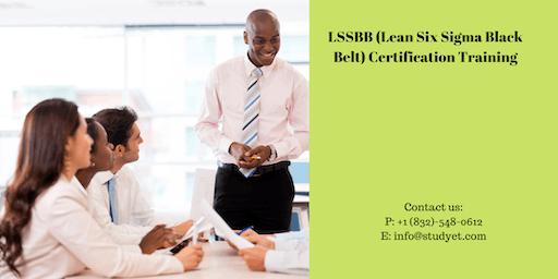 Lean Six Sigma Black Belt (LSSBB) Certification Training in Lawton, OK