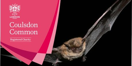 Bat Walk - Coulsdon  tickets
