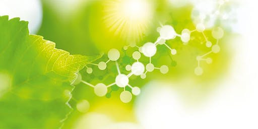 Exploring New Opportunities for Biobased Chemicals and Materials