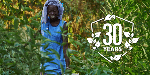 Celebrating 30 Years of Trees for the Future
