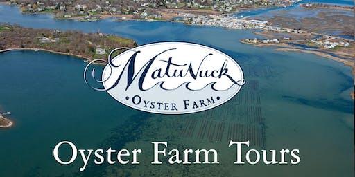 Matunuck Oyster Farm Tour