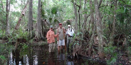 NATURALIST LED SWAMP WALK (Multiple dates) tickets
