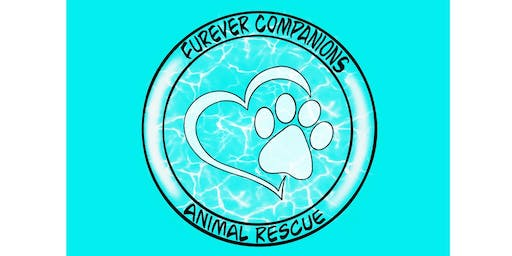 Furever Companions Animal Rescue Fundraiser