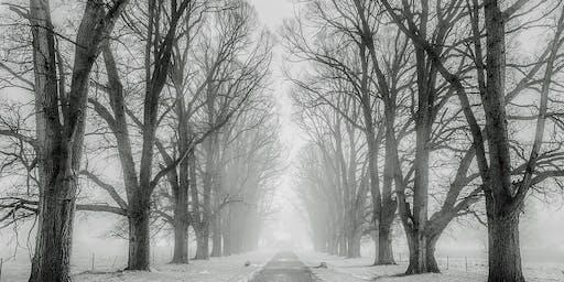 Winter Tree ID Walk & Holiday Potluck