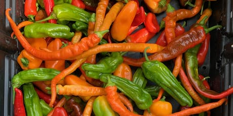 How to Grow, Care, and Cook Heirloom Peppers! - Workshop tickets