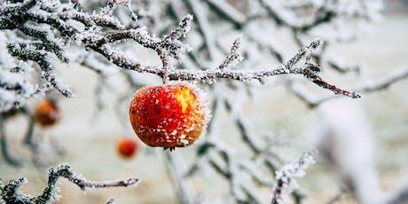 Winter 2020: Sacramento: Living the Seasons (4 week series) tickets