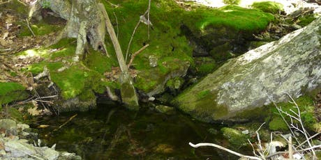 From Bedrock to Birds: How Geology and Hydrology Shape Ecosystems tickets