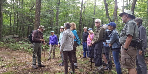 Housatonic Heritage Walk: Walking the Royal Hemlock Trail