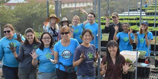 September 7: Free Shuttle from Ortega Branch Library to the Presidio Native Plant Nursery
