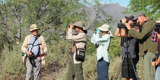 Hana Gardens Birding Trips (October)