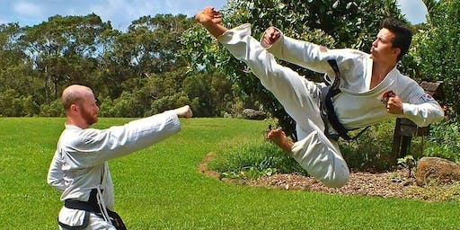 Traditional Taekwondo Practice in Central Park