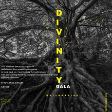 Divinity Gala - Matchmaking tickets
