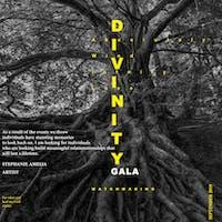 Divinity Gala - Matchmaking