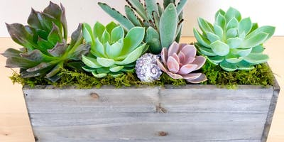 Make-n-Take: Succulent Centerpieces