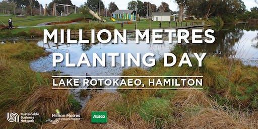 Million Metres + Alsco Planting Day - Hamilton