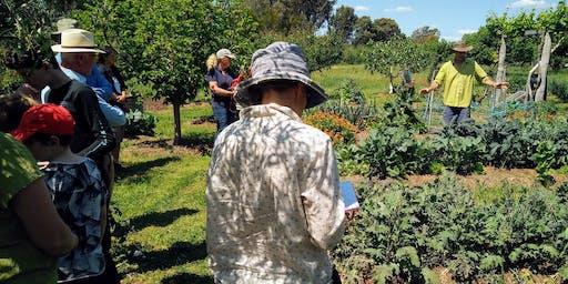 Autumn house, garden and farm tour