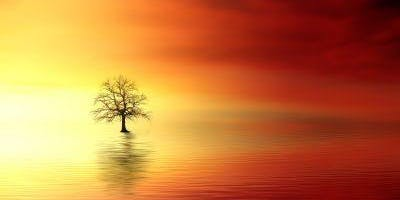 Meditation Experience - The Healing Power of Silence