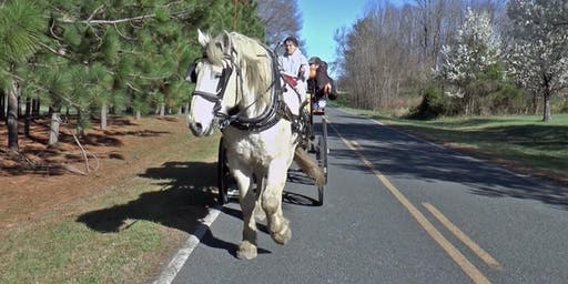 Carriage Ride in the Country