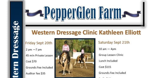 WESTERN DRESSAGE CLINIC  Western Dressage Show Preparation